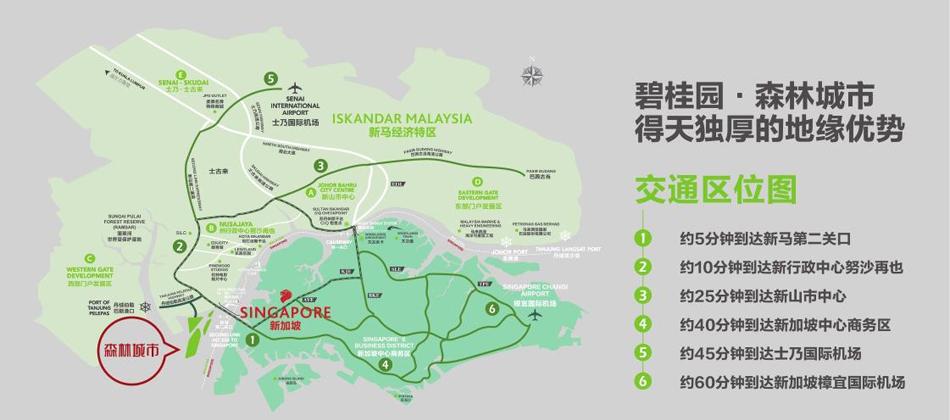 碧桂园森林城市-青岛新闻网