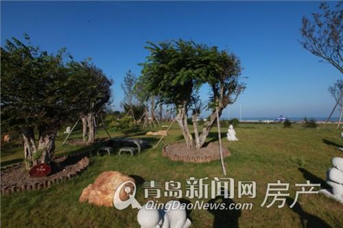 紫檀山千年青檀园林