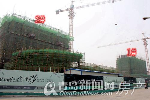 绿岛印象,二期欣苑,开发区,香江路,沃航荟VIP金卡,青岛新闻网