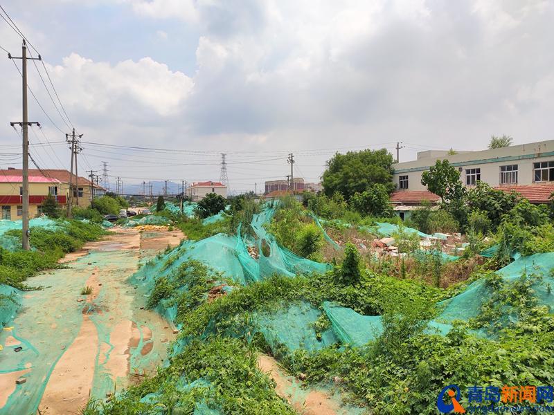 探访青岛五万人专业足球场地块:具体位置在这里