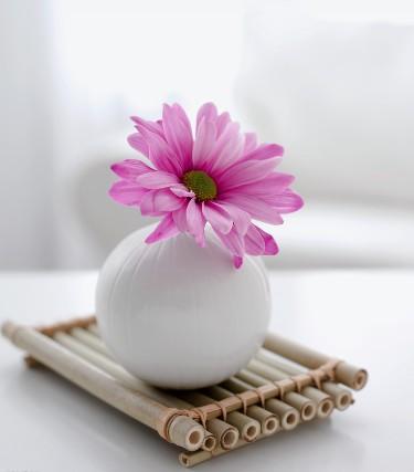 每一枚鸡蛋,每一粒米……都可以偶发灵感和诗词的意境,与各种花草搭配